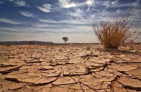 Terra va deveni un desert in care nu va mai exista viata?